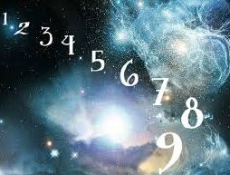 Numerology Reports